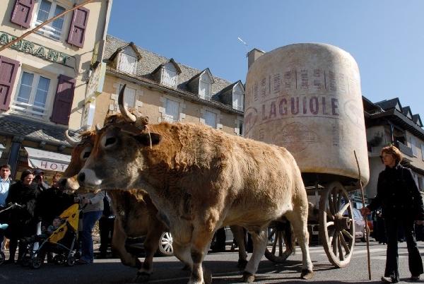 Les bœufs gras de Laguiole annoncent les ripailles de Pâques