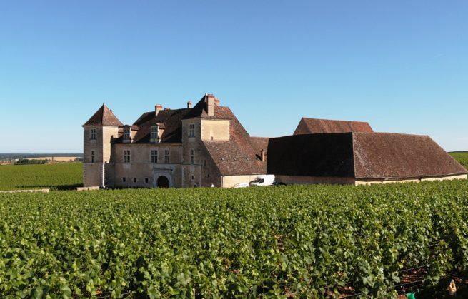 Terroirs de Légende : ces vins de Bourgogne qui font rêver