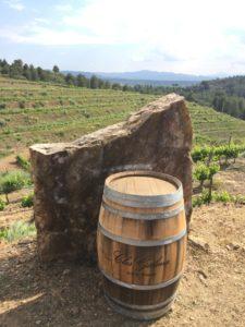 visite clos galenas vin du priorat