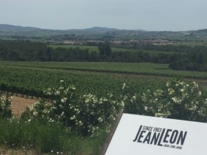visite catalogne, vignes Jean leon