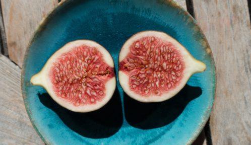 La Figue d'Alaric, Aude à un fruit d'exception